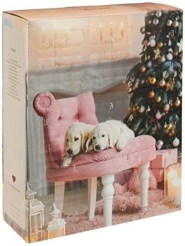 Weihnachtskalender Für Hunde.Hunde Adventskalender 2019 Inhalt Preise Adventio De