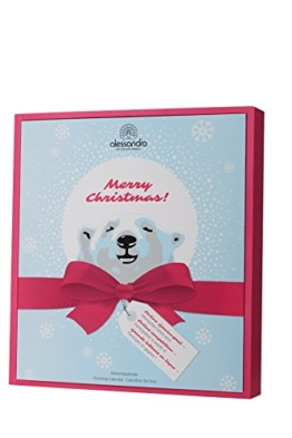 Alessandro: Ice Bear Adventskalender 2017 Xmas - Limitierte Edition! - 1