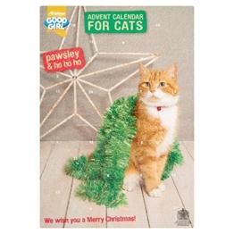 'Pawsley' Katzen-Adventskalender - 1